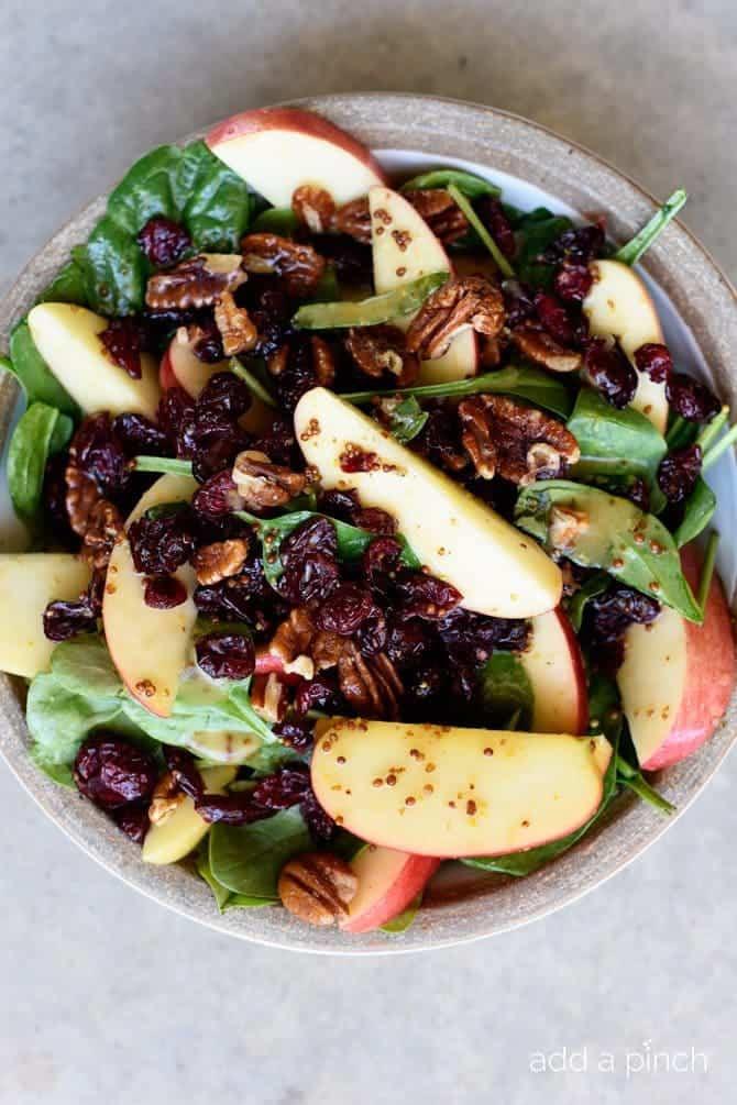 Apple Salad Recipes  apple cranberry salad
