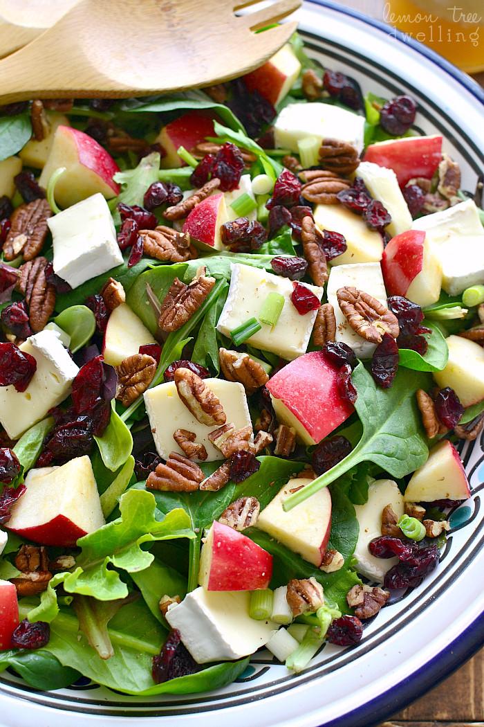 Apple Salad Recipes  Simple Salad Recipes The Idea Room