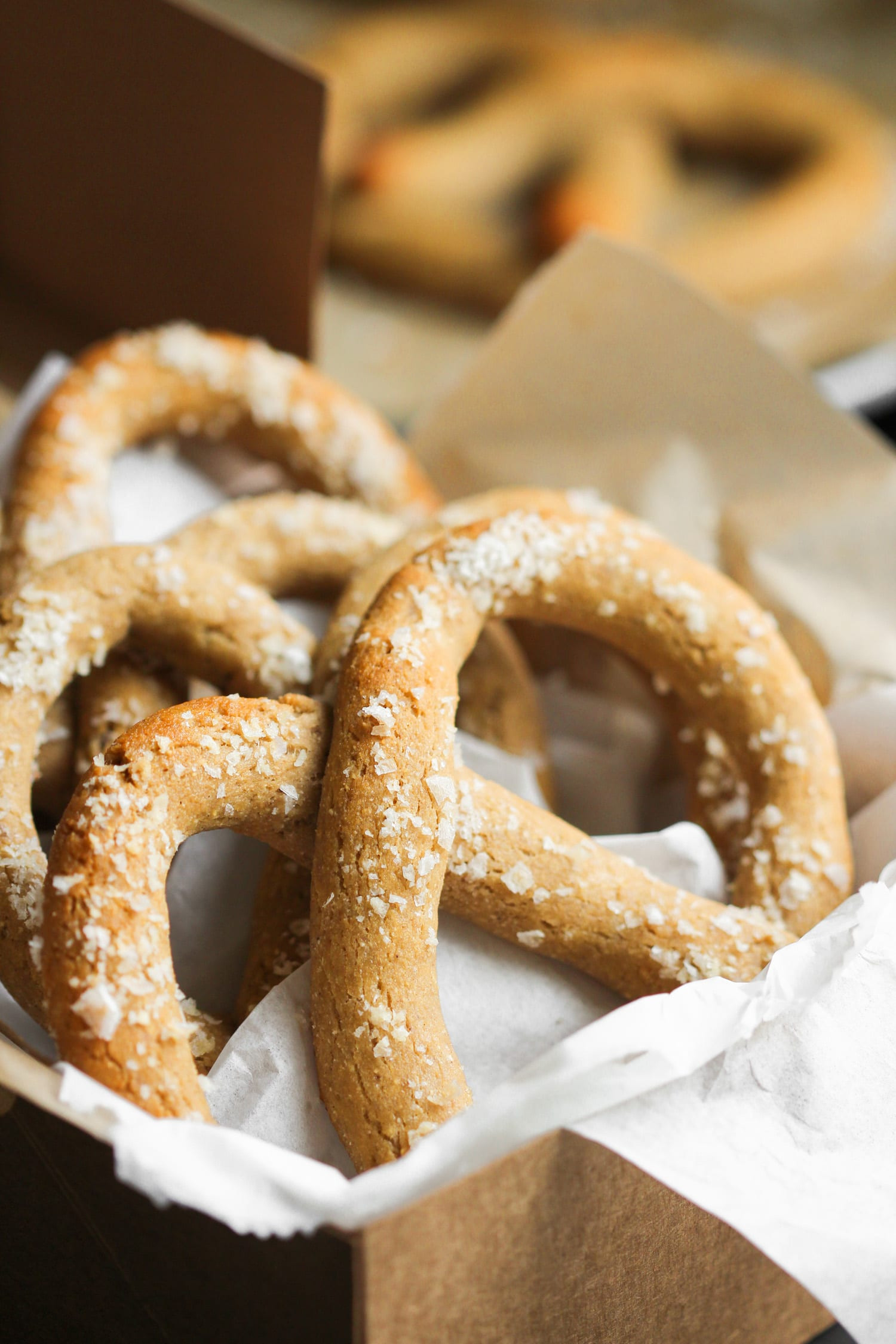 Are Pretzels Healthy  Healthy Homemade Low Carb and Gluten Free Soft Pretzels Recipe