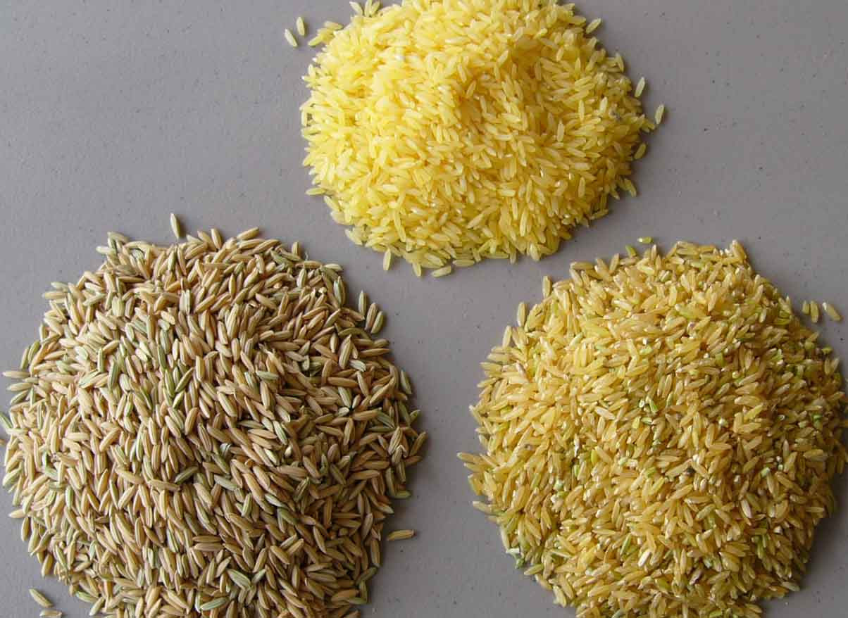 Arsenic In Brown Rice  FDA Deliberately Deceiving Americans Over Arsenic In Rice