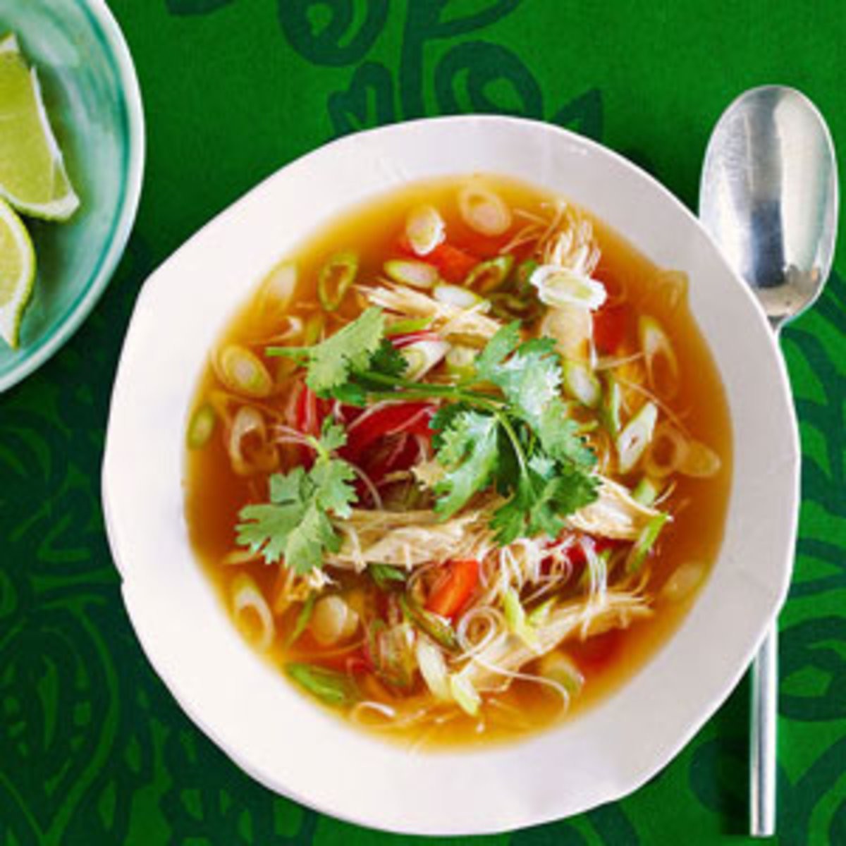 Asian Chicken Soup  Chicken Soup Recipes Rachael Ray Every Day