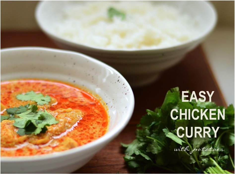 Authentic Indian Chicken Curry Recipes  ebabee likes