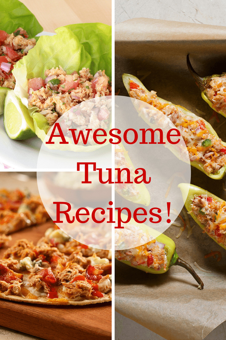 Awesome Dinner Ideas  Looking for Healthy Dinner Ideas Here is 3 Easy Tuna Recipes