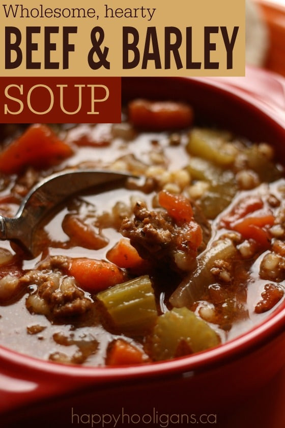 Beef And Barley Soup Recipe  Beef and Barley Soup Recipe Happy Hooligans