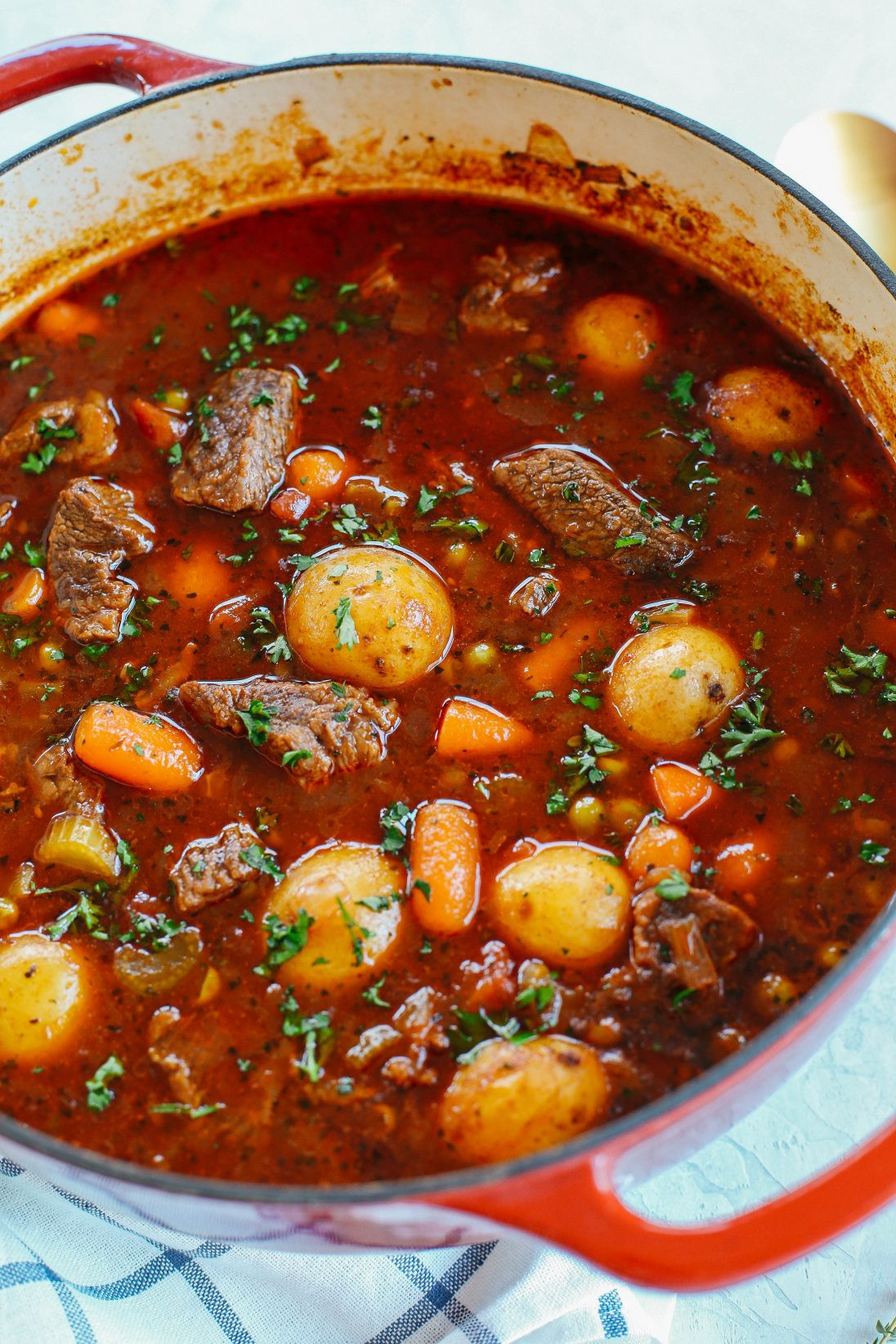 Beef Stew Stove Top  Beef and Tomato Stew Instant Pot Slow Cooker and Stove