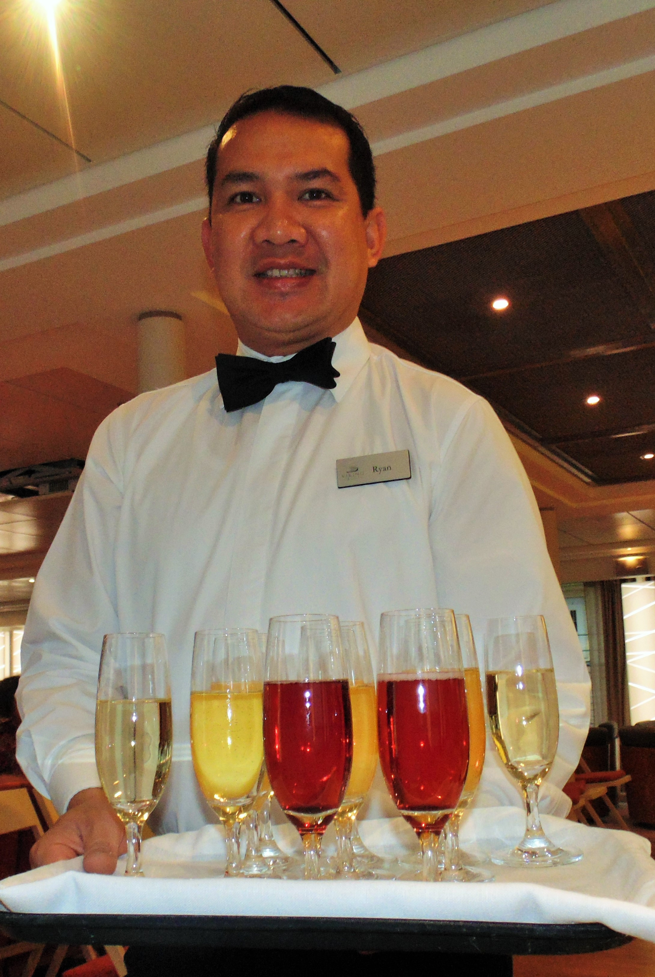 """Before Dinner Drinks  """"Life is but a Dream"""" on a Viking River Cruise"""