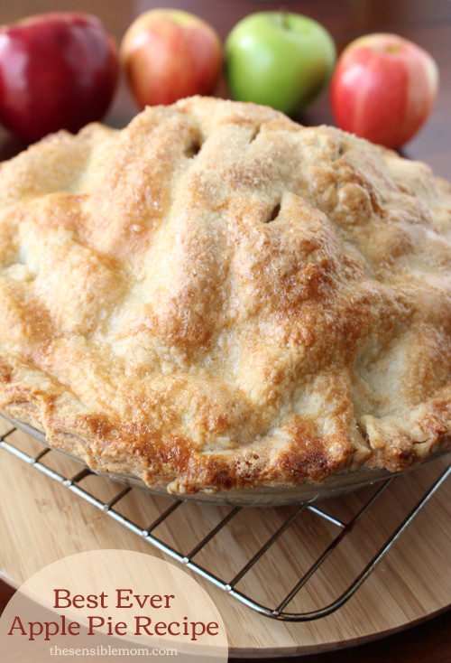 Best Apple For Pie  Best Ever Apple Pie Recipe and recipe for a double pie crust