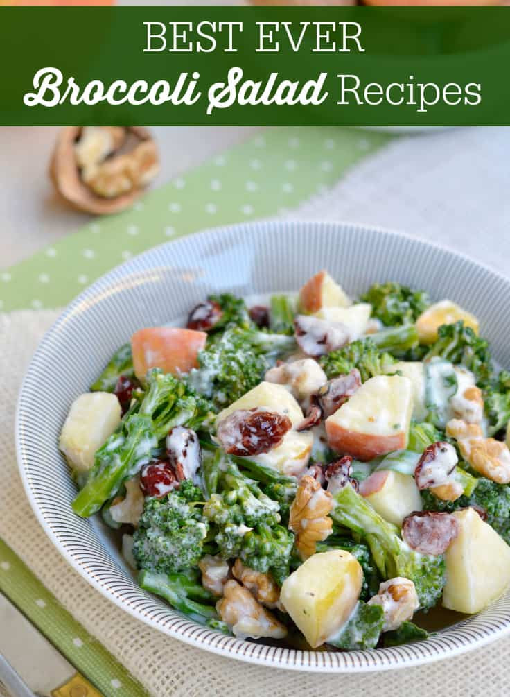 Best Broccoli Salad Recipe  Best Ever Broccoli Salad Recipes Simply Stacie