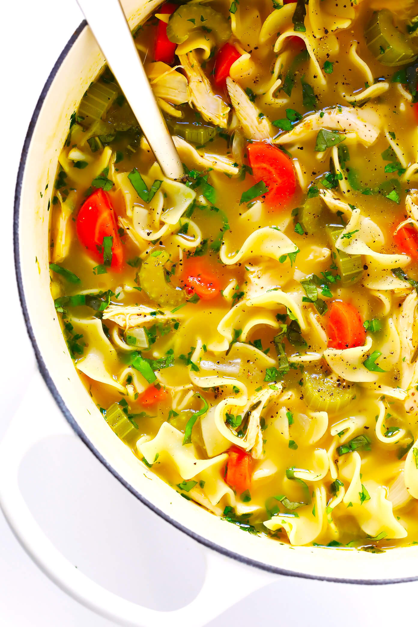 Best Chicken Noodle Soup Recipe  Herb Loaded Chicken Noodle Soup