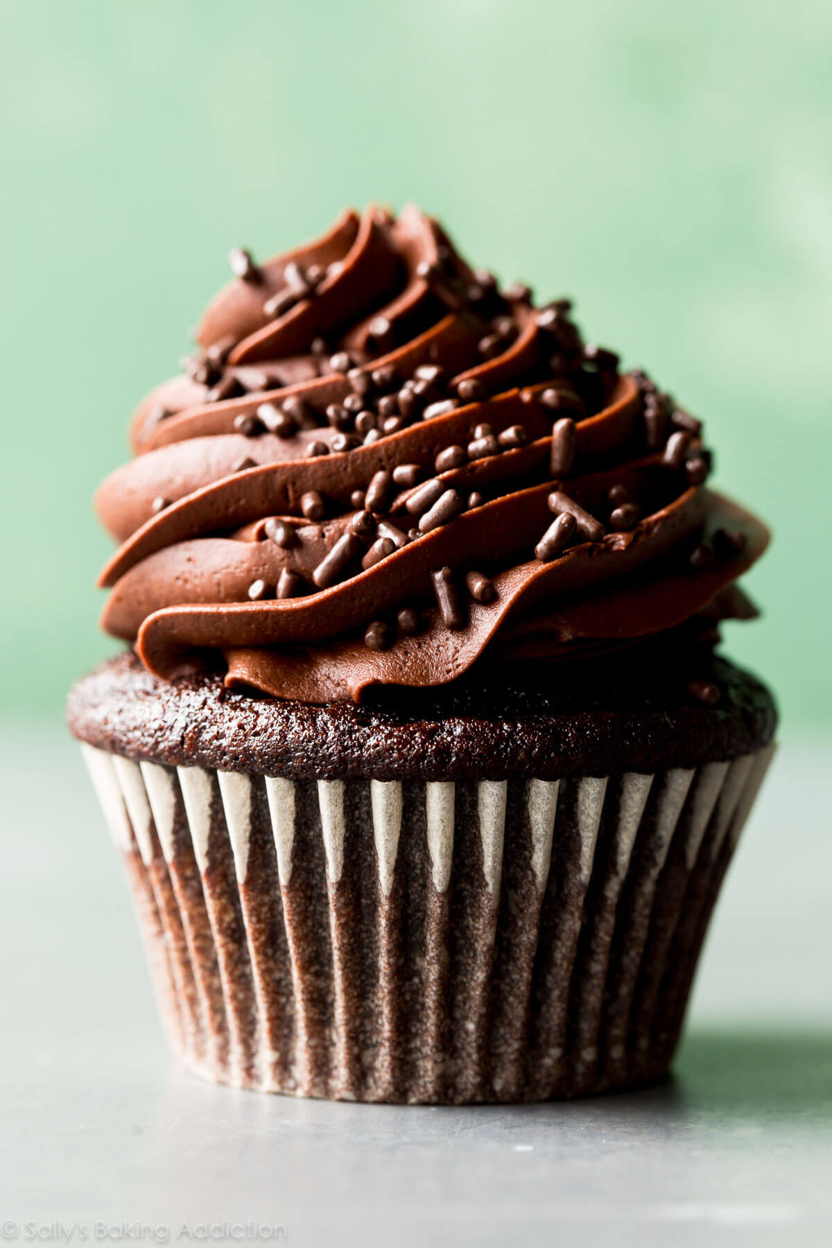 Best Chocolate Cupcakes  Classic Chocolate Cupcakes with Vanilla Frosting Sallys