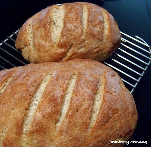 Best Gluten Free Bread  Cranberry Morning Best Gluten Free Bread Recipe