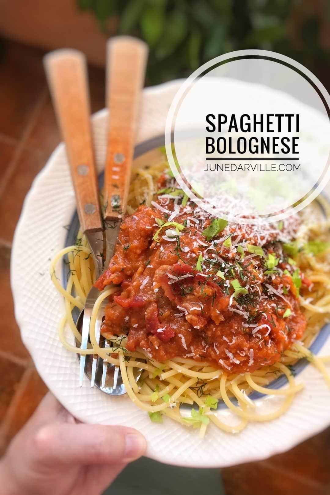 Best Homemade Spaghetti Sauce  Spaghetti Sauce Homemade & Best Ever