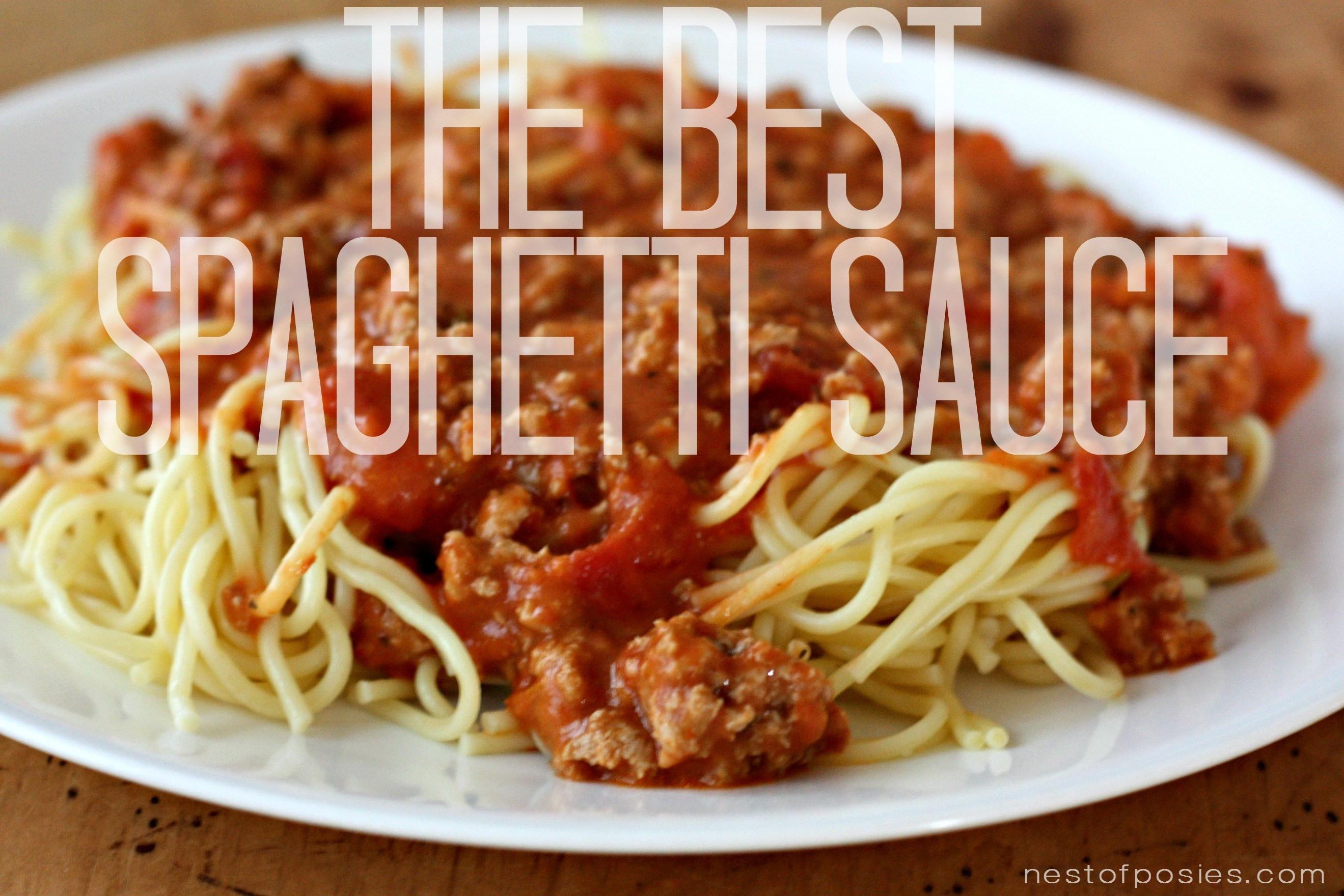 Best Homemade Spaghetti Sauce  the best spaghetti sauce recipe