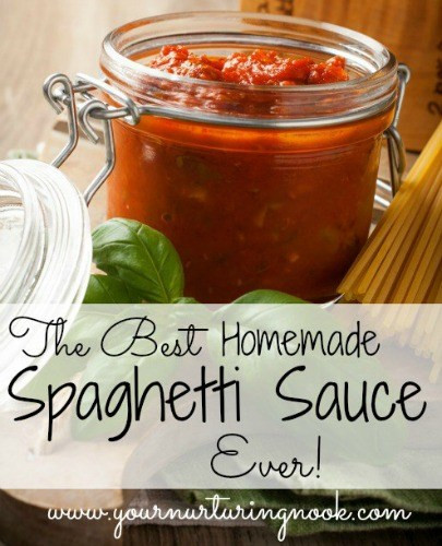 Best Homemade Spaghetti Sauce  The Best Homemade Spaghetti Sauce Recipe Ever