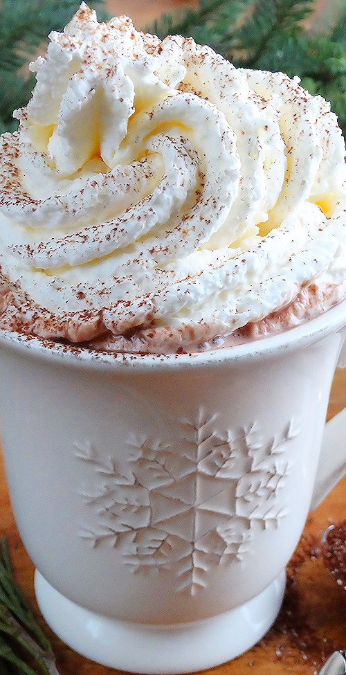 Best Hot Chocolate Mix  Homemade Hot Cocoa Mix World's Best Wicked Good Kitchen
