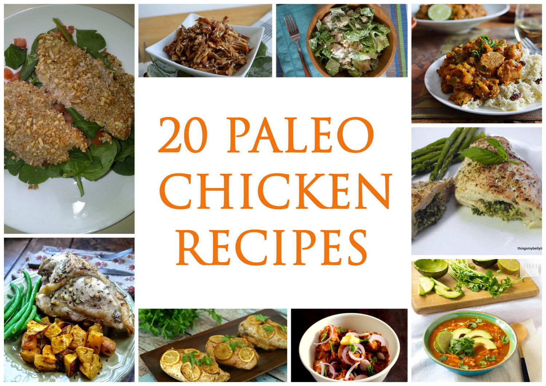 Best Paleo Dinner Recipes  20 Paleo Chicken Recipes Paleo Zone Recipes