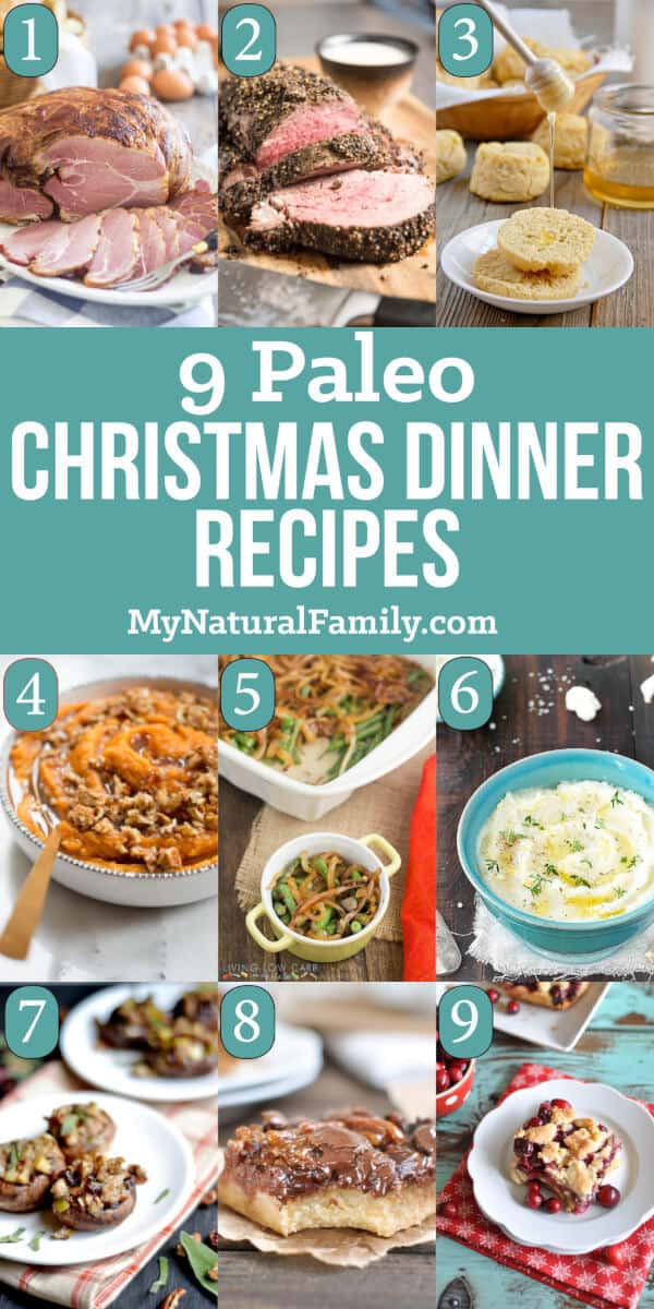 Best Paleo Dinner Recipes  9 of the Best Ever Paleo Christmas Recipes for a Five