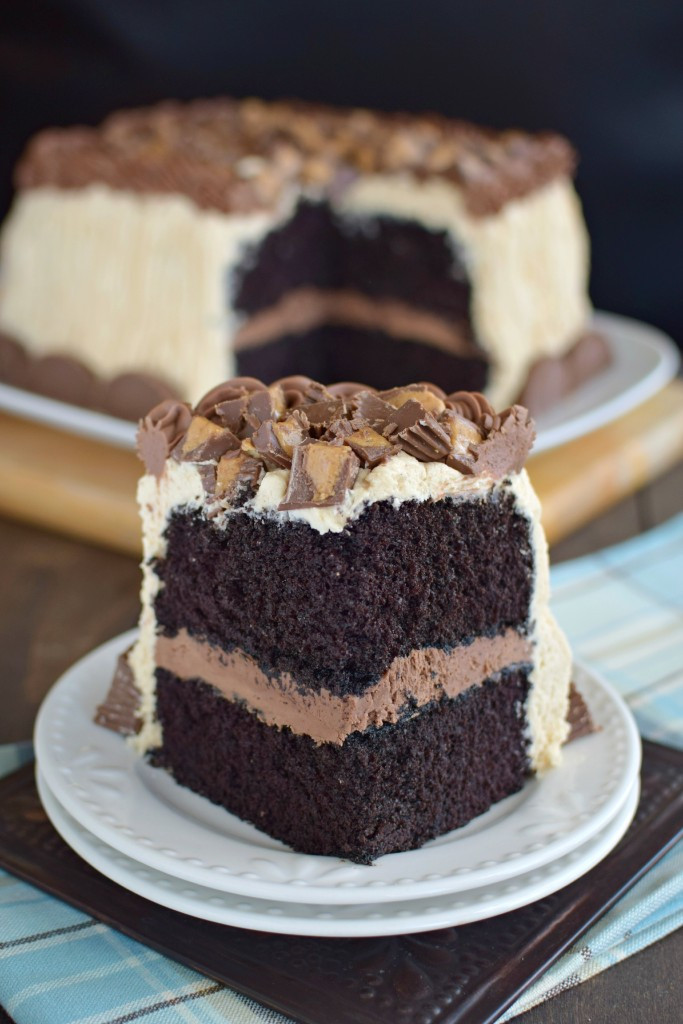 Best Peanut Butter Desserts  51 Best Chocolate Cake Recipes for 2016