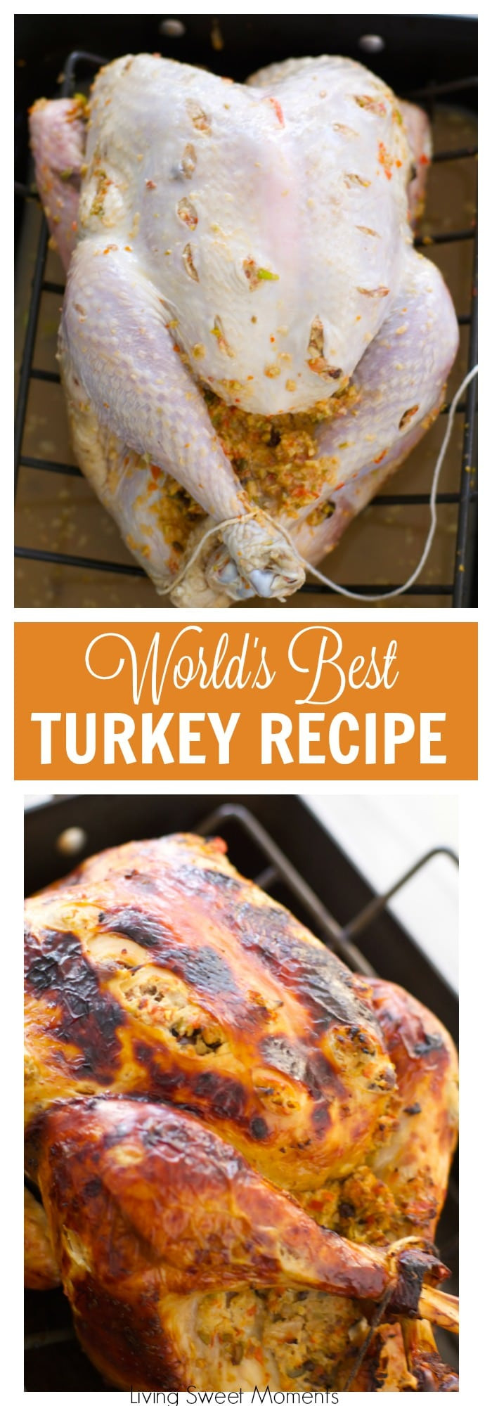 Best Thanksgiving Turkey Recipe Ever  The World s Best Turkey Recipe A Tutorial Living Sweet