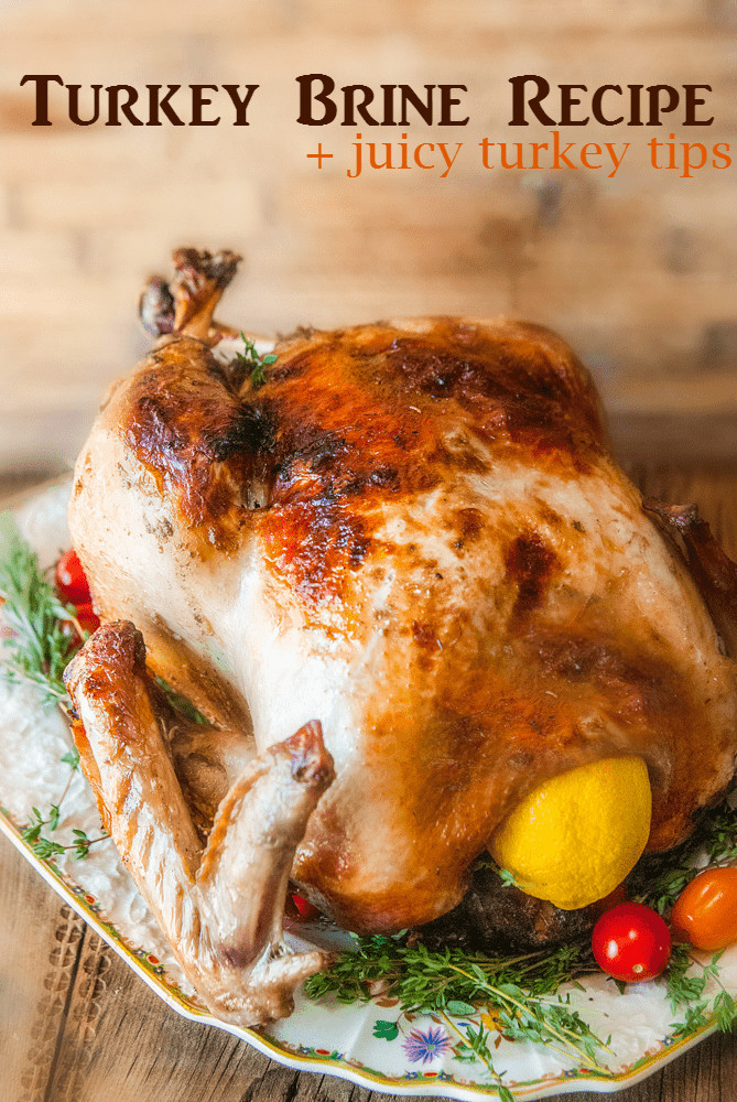 Best Thanksgiving Turkey Recipe Ever  Citrus & Herb Turkey Brine Recipe for a Juicy Thanksgiving
