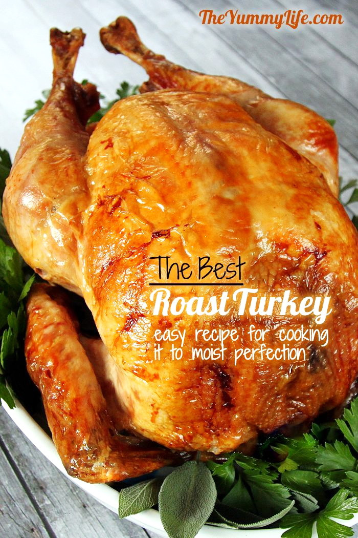 Best Thanksgiving Turkey Recipe  Top 10 Simple Turkey Recipes – Best Easy Thanksgiving
