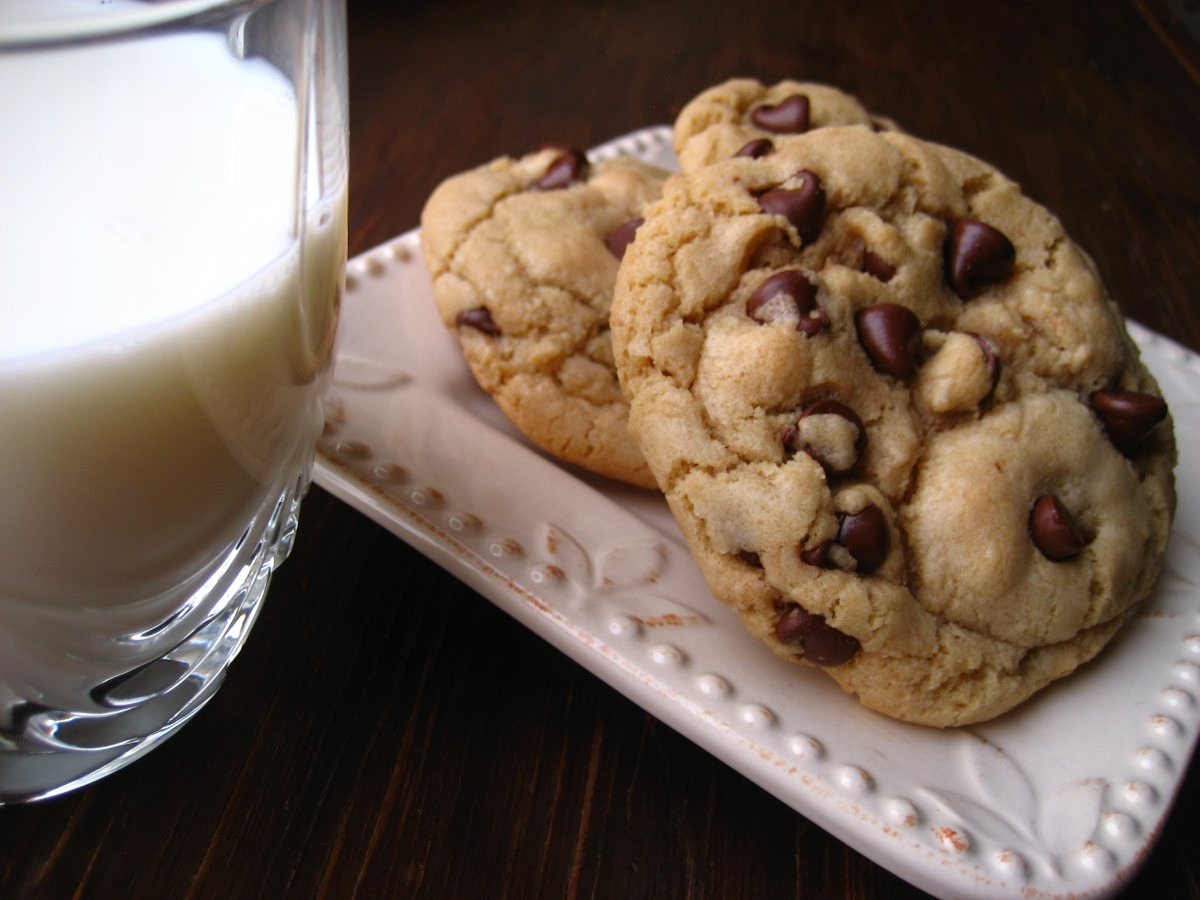 Big Fat Chewy Chocolate Chip Cookies  Big Fat Chewy Chocolate Chip Cookies