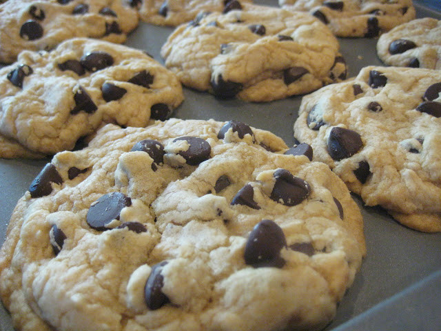 Big Fat Chewy Chocolate Chip Cookies  Best Big Fat Chewy Chocolate Chip Cookie Recipe — Dishmaps