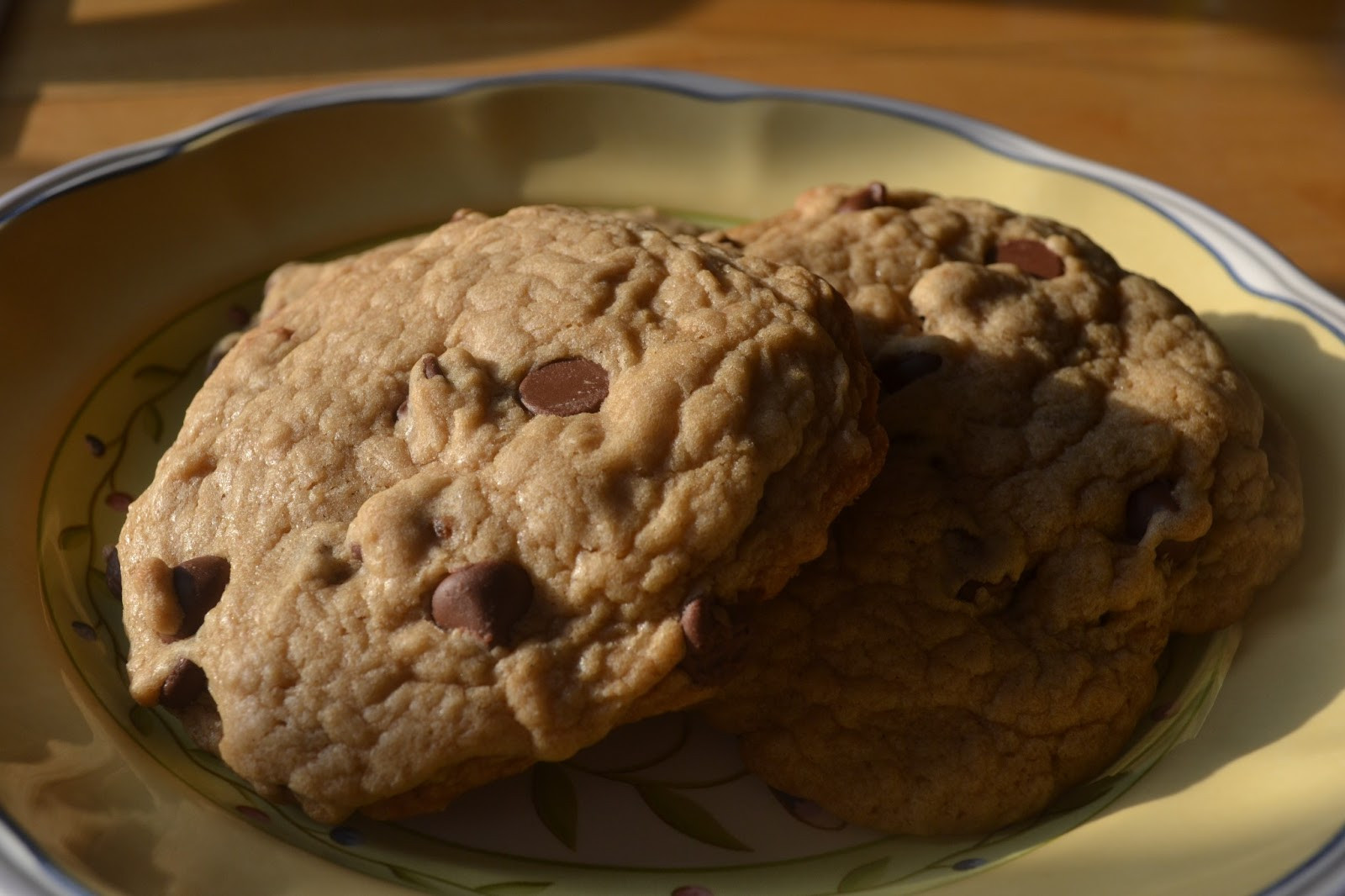 Big Fat Chewy Chocolate Chip Cookies  Best Big Fat Chewy Chocolate Chip Cookie