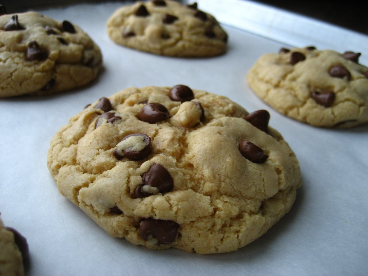 Big Fat Chewy Chocolate Chip Cookies  Best Big Fat Chewy Chocolate Chip Cookies Recipe All