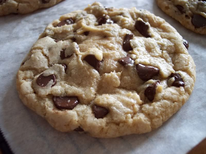 Big Fat Chewy Chocolate Chip Cookies  Big Chewy Chocolate Chip Cookies