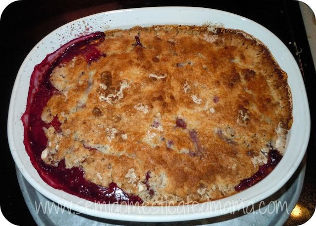 Blackberry Cobbler With Cake Mix  Berry Cobbler With Cake Mix And Diet 7Up tronics