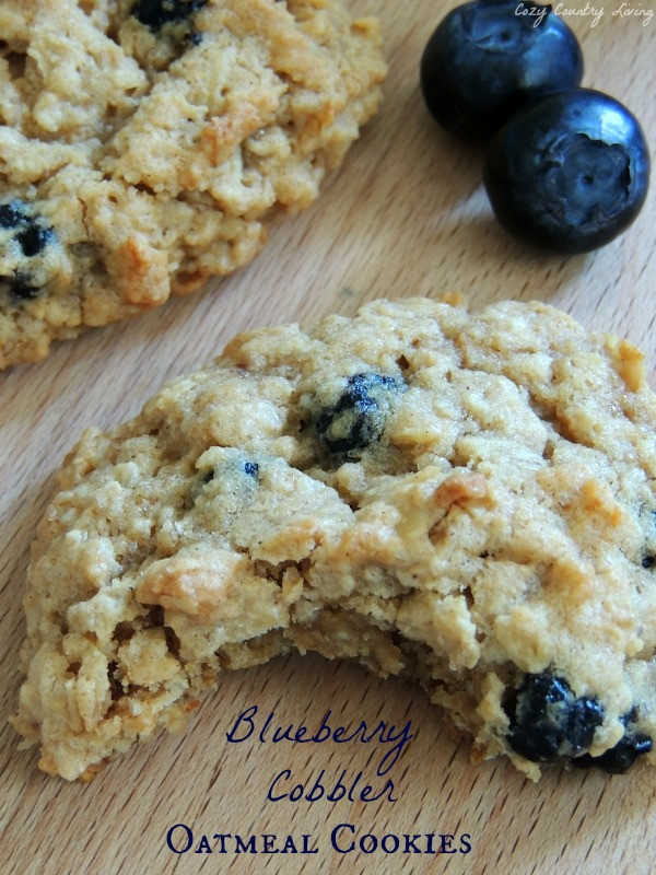 Blueberry Oatmeal Cookies  Blueberry Cobbler Oatmeal Cookies
