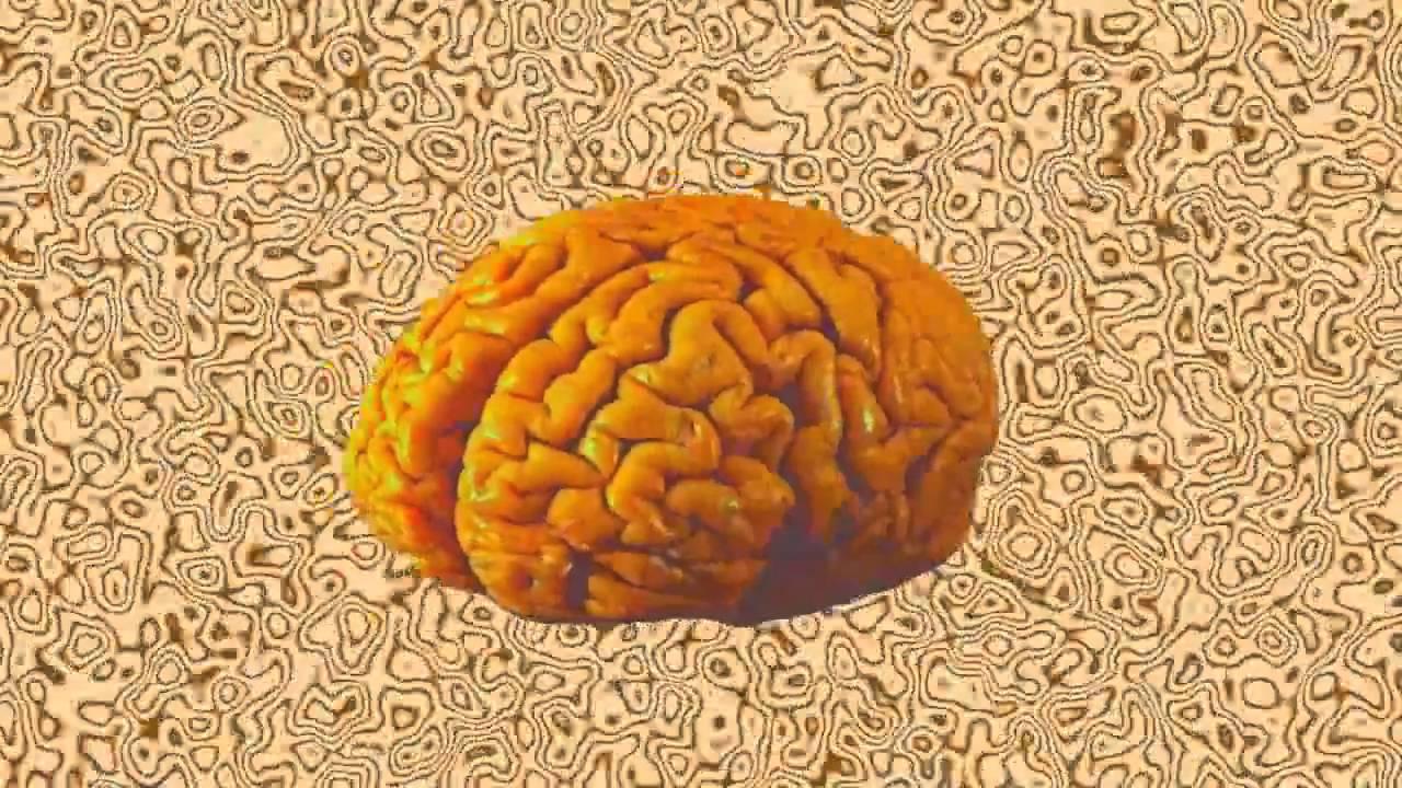 Brain Stew Green Day  Green Day Brain Stew lyrics