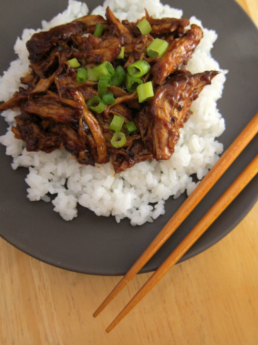 Braised Country Style Pork Ribs  Braised Country Style Pork Ribs in Ginger Ale & Hoisin Sauce