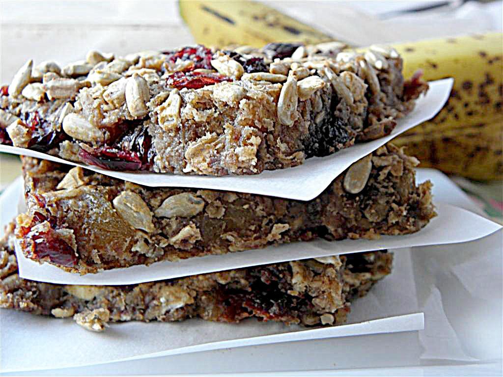 Breakfast Bars Recipes  Oat & Fruit Breakfast Bars Dairy Egg Sugar Flour Nut