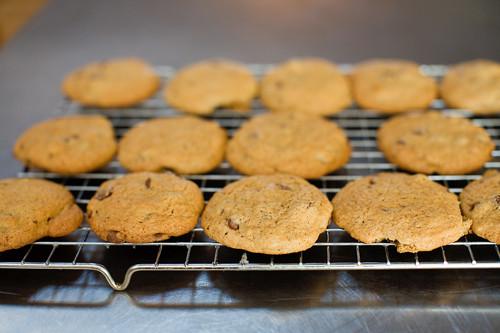 Breakfast Cookies Pioneer Woman  PW's Good Ol' Basic Chocolate Chip Cookies