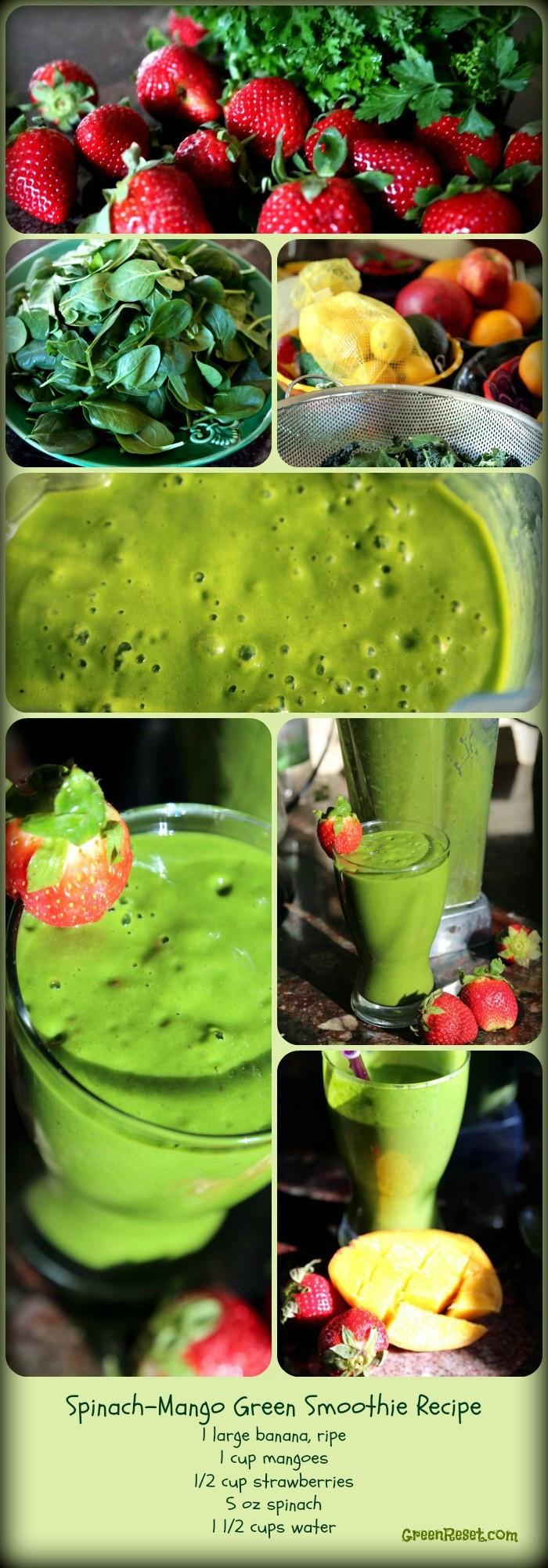Breakfast Smoothie Recipes  9 Breakfast Smoothies Plus 3 More Super Healthy Breakfast