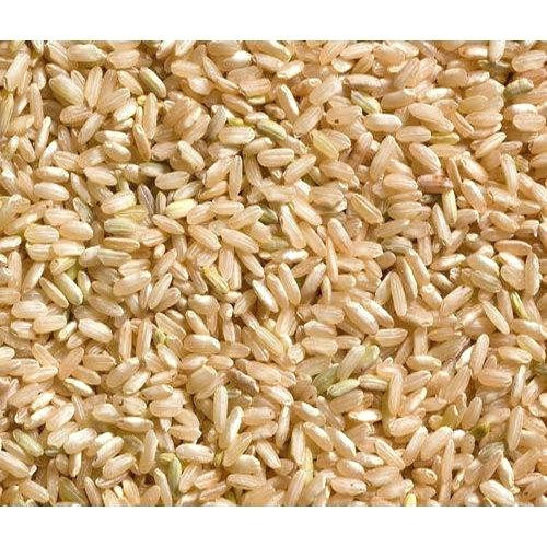 Brown Rice Water Ratio  Water To Rice Ratio For Rice Cooker Water Ionizer