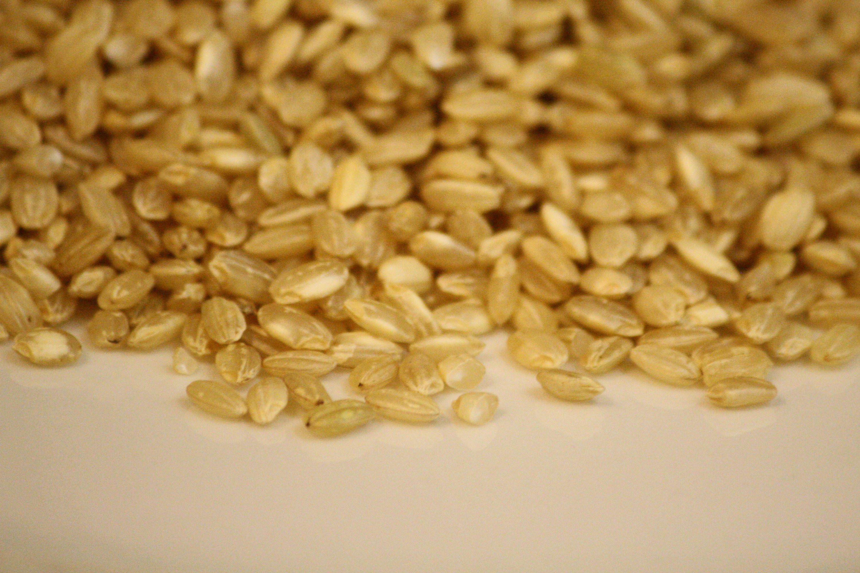 Brown Rice Water Ratio  Short grain brown rice to water ratio in rice cooker