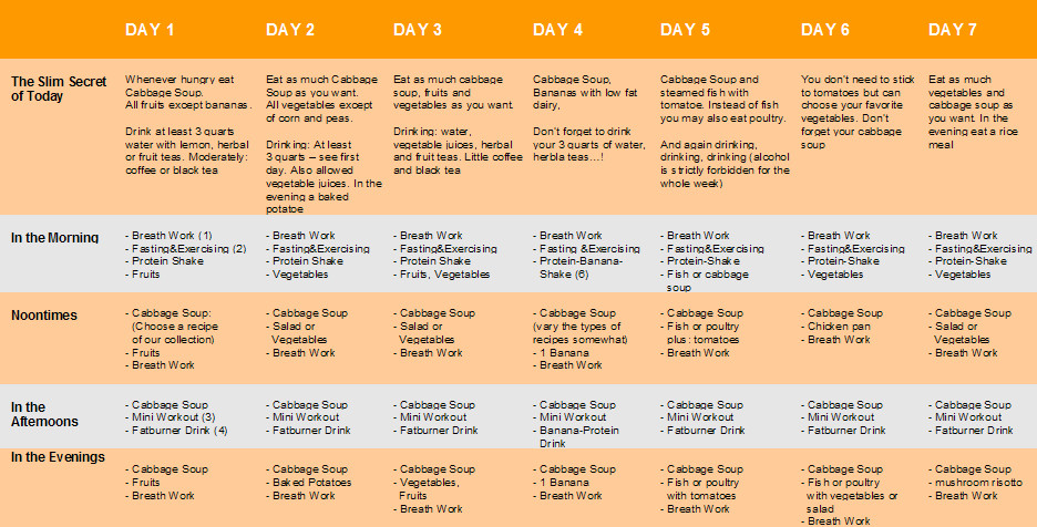 Cabbage Soup Diet Results  The Cabbage Soup Diet 7 Day Cabbage Soup Diet Recipes