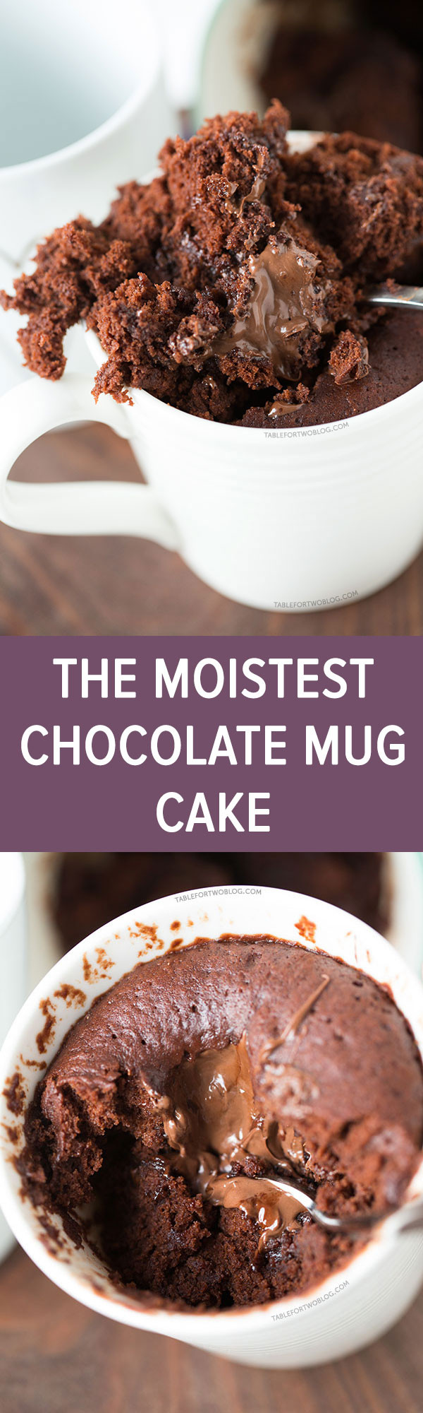 Cake In A Mug Recipe  The Moistest Chocolate Mug Cake For e or Two No Egg