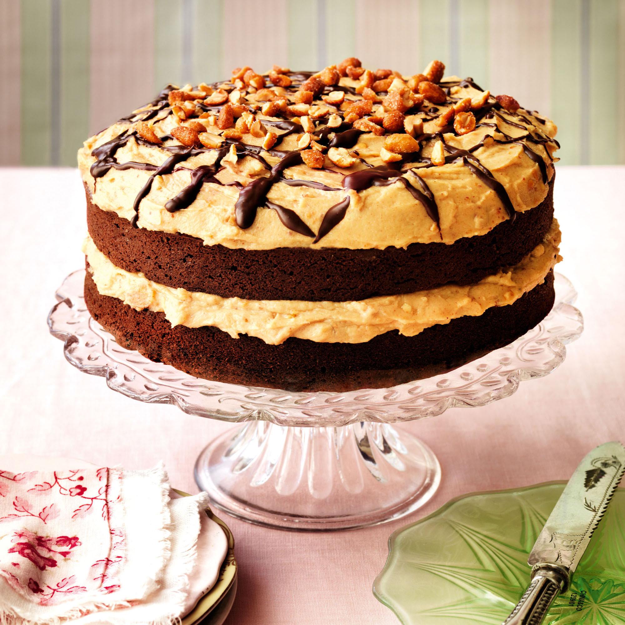 Cake Recipe Ideas  Chocolate Brownie Cake Recipe