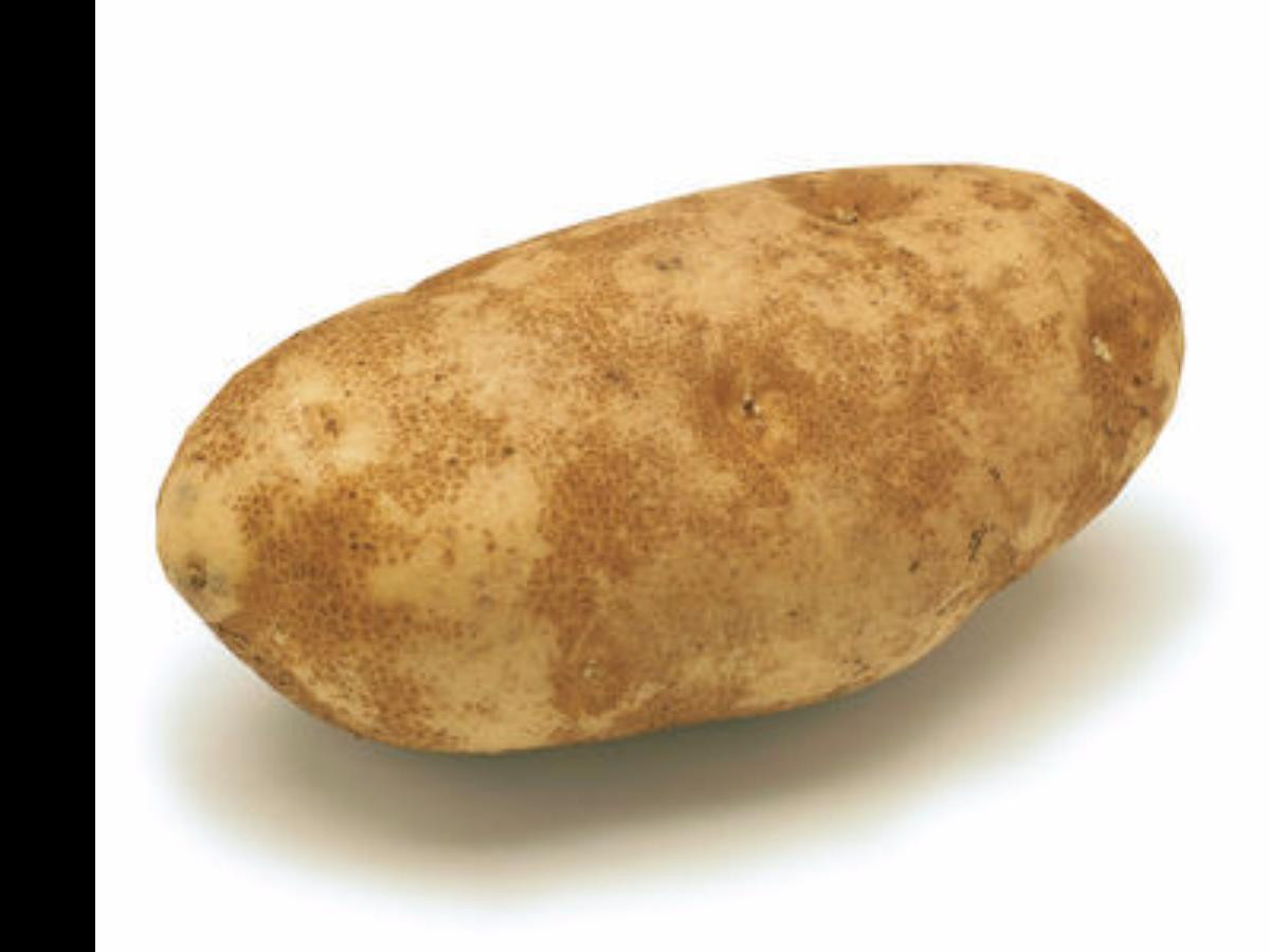 Calories In A Russet Potato  Russet potatoes Nutrition Information Eat This Much
