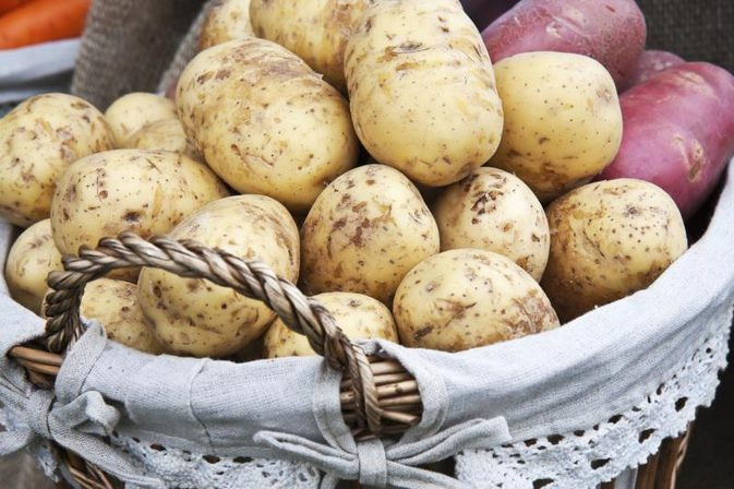 Calories In A Russet Potato  Nutritional Differences Between Russet & Red Potatoes
