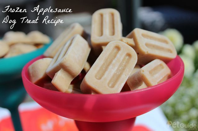 Can Dogs Have Applesauce  Frozen Applesauce Dog Treat Recipe