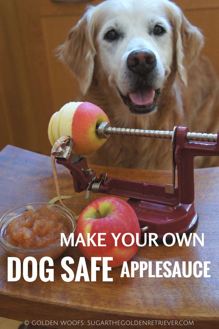 Can Dogs Have Applesauce  699 Best images about dog treats on Pinterest
