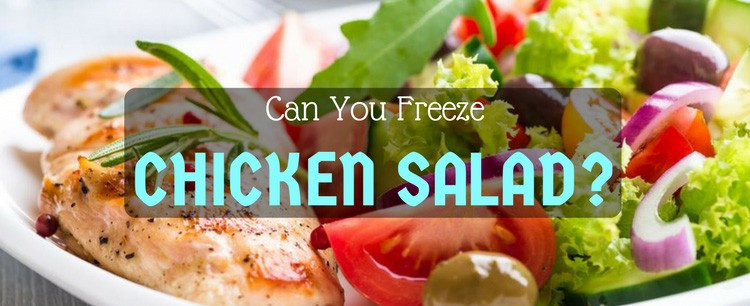 Can You Freeze Macaroni Salad  Can You Freeze Chicken Salad Perfect Ways For Practical Minds