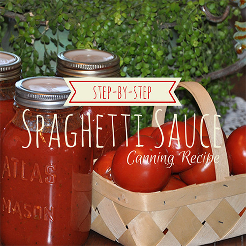Canned Spaghetti Sauce  Spaghetti Sauce Canning Recipe Step by Step