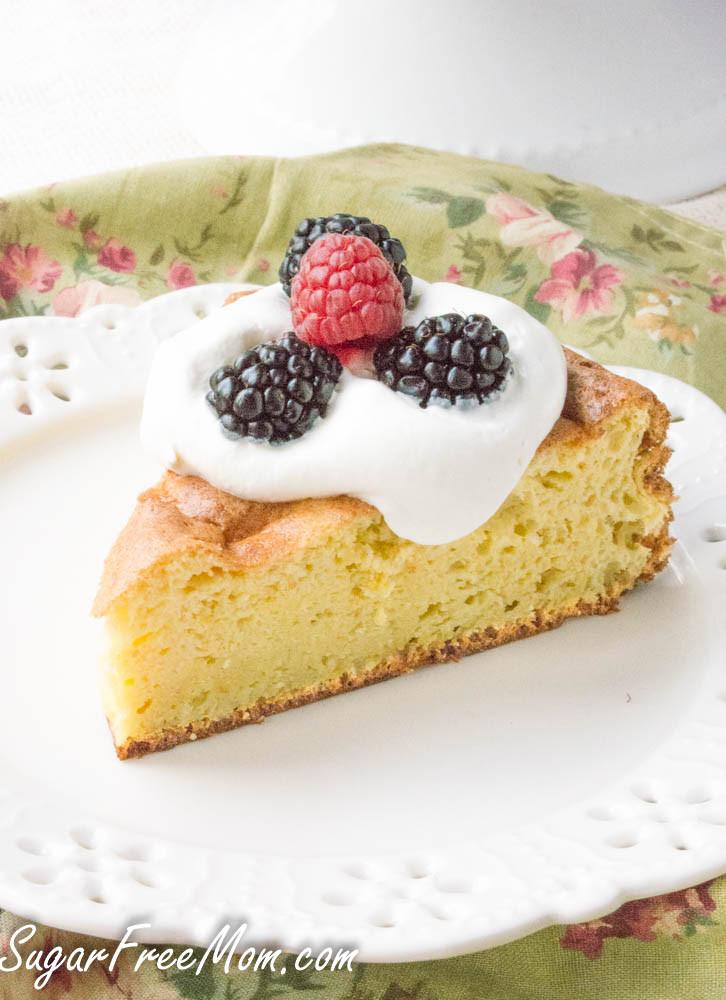 Carbs In Angel Food Cake  Sugar Free Low Carb Sponge Cake