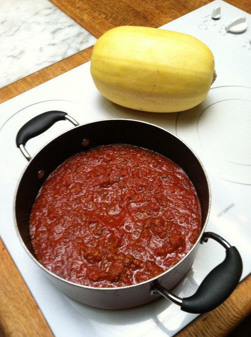 Carbs In Tomato Sauce  Low Carb Spaghetti Sauce